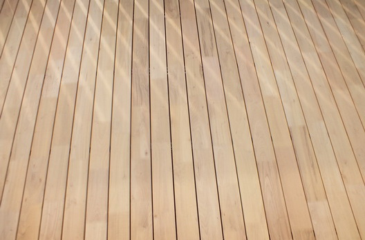 Detailansicht Akazie (Robinie) Terrasse in Sexau